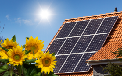 California Energy Commission:  Zero Energy Residential Optimization Study